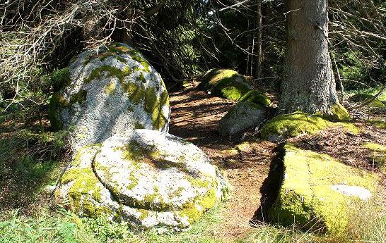 Radiästhesie- und Geomantieprojekt «Sonnenstein im Blasiwald»